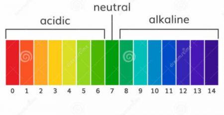 Το pH του εδάφους και η ανάπτυξη των φυτών και δένδρων